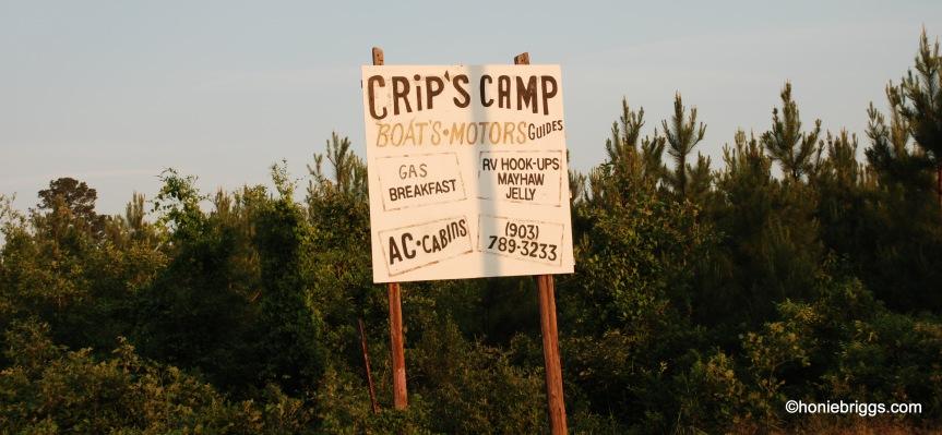 Crips Camp