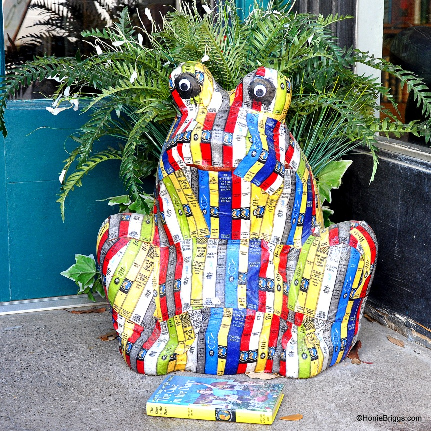 Froggy McBookhopper