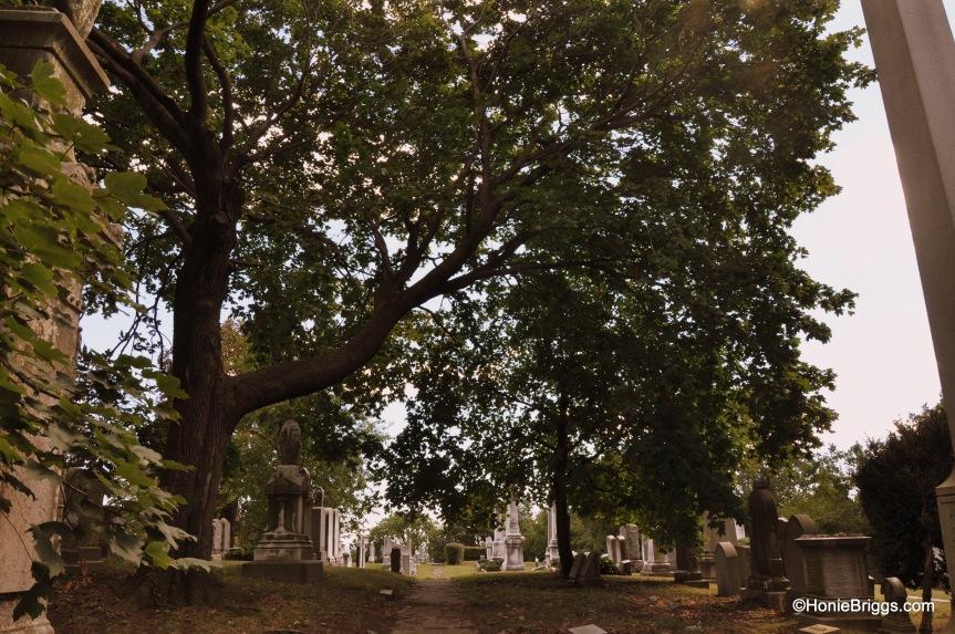 path to gravesite